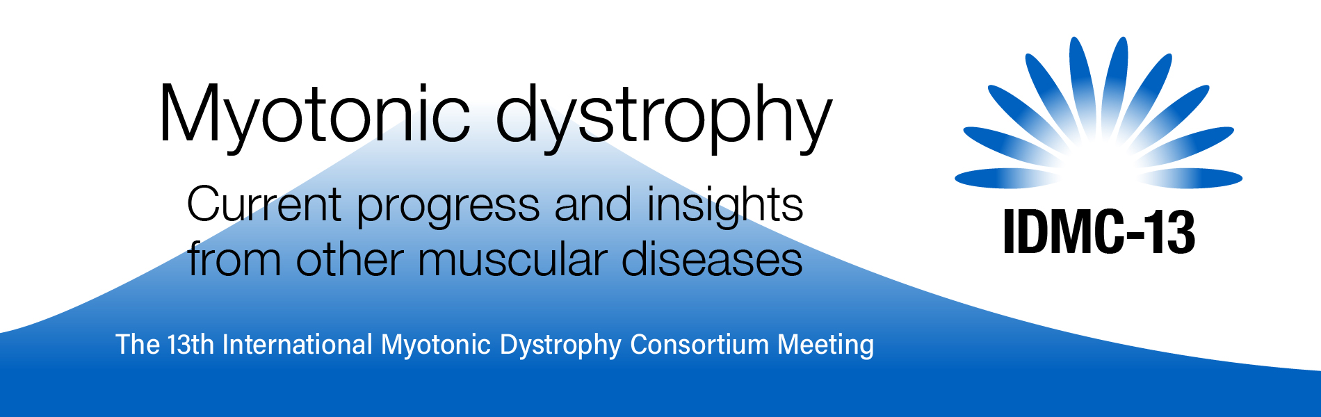 Nyotonic Dystrophy: Current Progress and Insights from Other Muscular Diseases